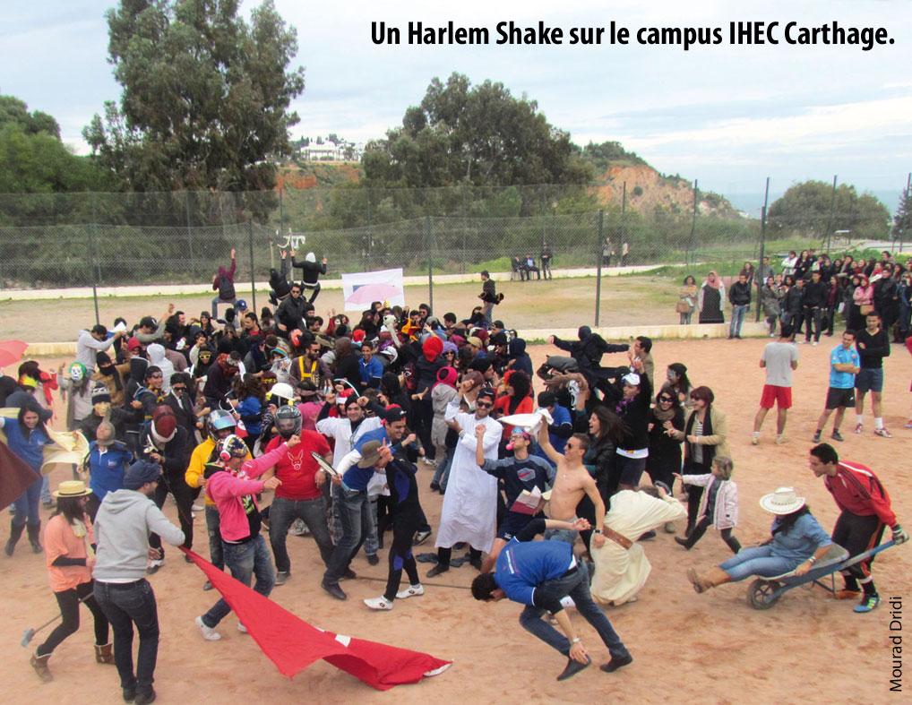 Harlem-Shake-IHEC