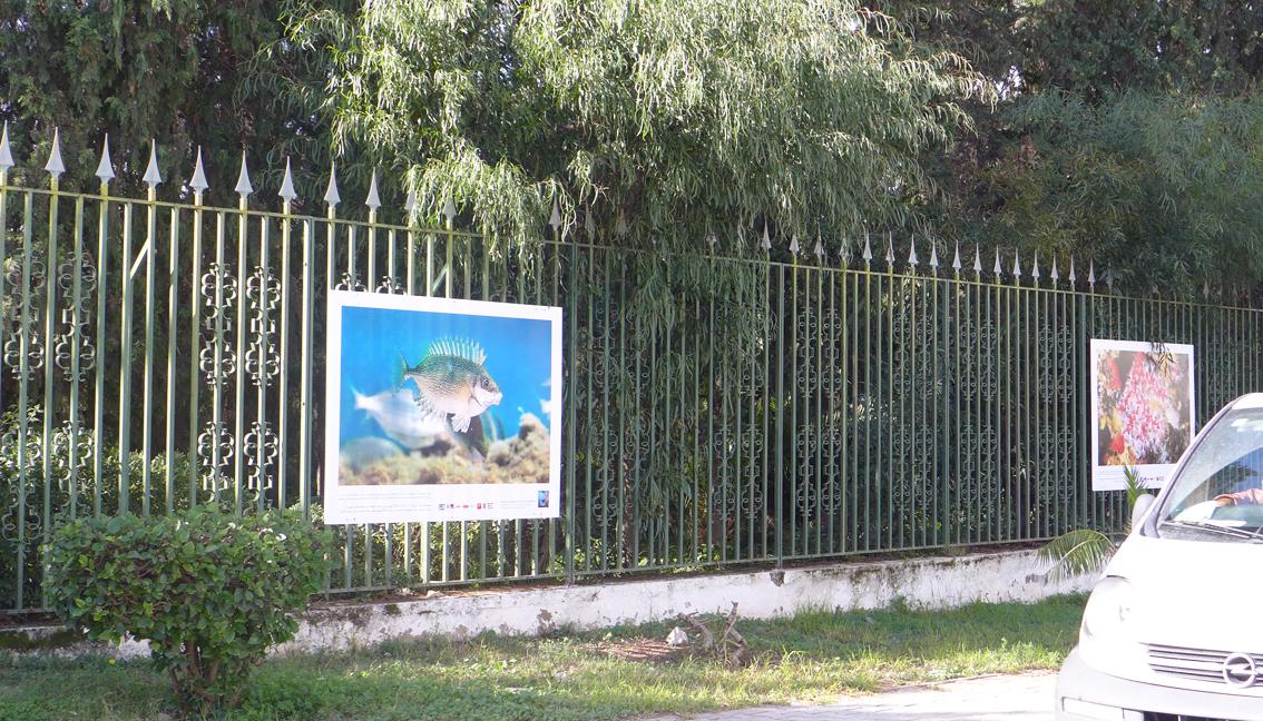 tunisiesous-marine4
