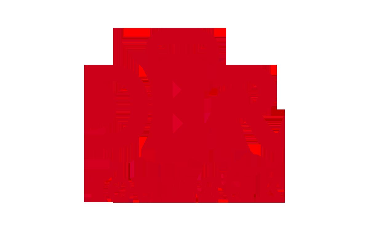 logo DER